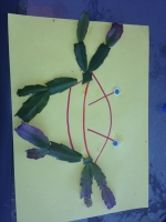 Toddler leaf craft.