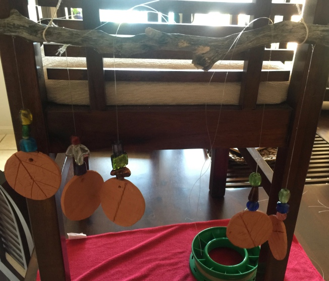 Assembly of wind chime